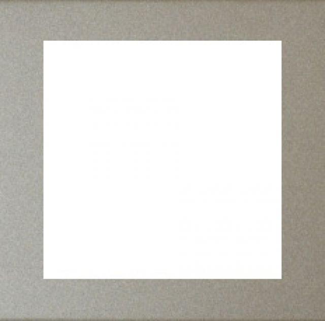 Rámeček zásuvky FUTURE - Ušlechtilá Ocel ABB